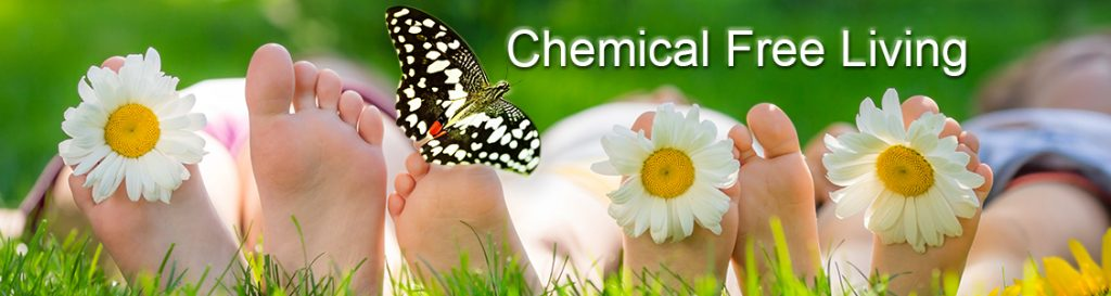 Chemical Free Living With Children – Food for thought